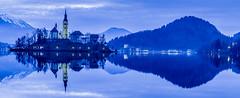 Blue Bled