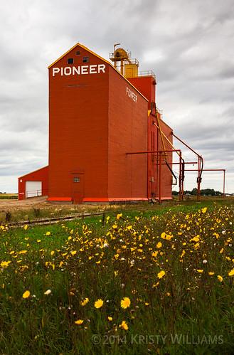 flowers canon elevator grain prairie saskatchewan kenaston eos50d