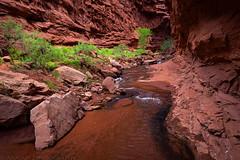 Mary Jane Canyon (6-11-16)