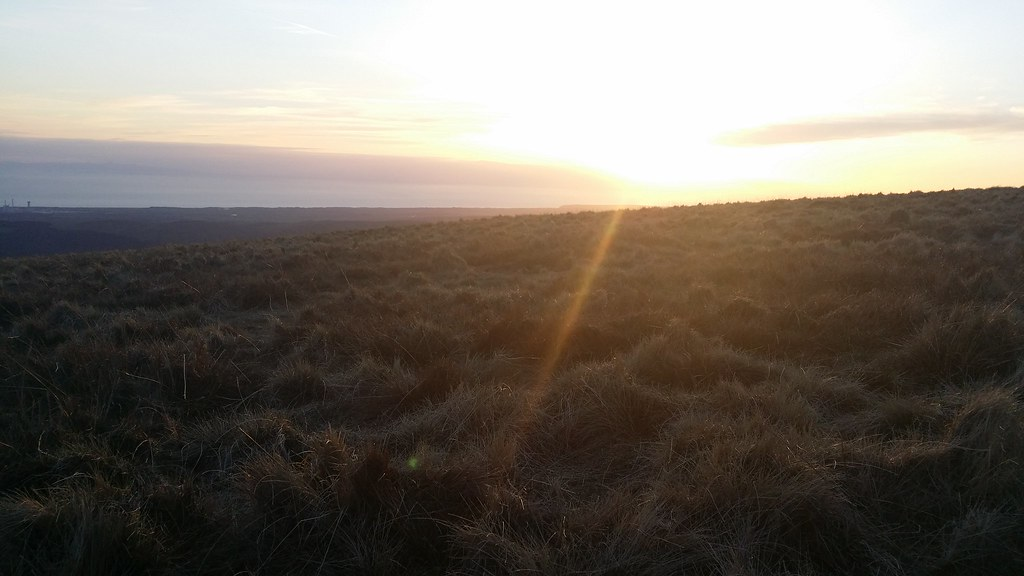 Sunset #sh