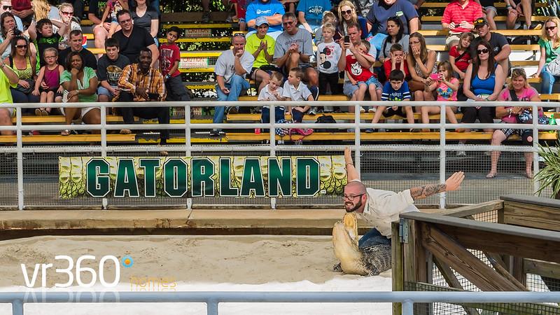 Gatorland Orlando - A Bite of Real Florida