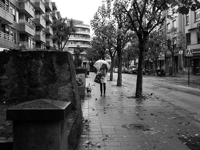 Abrigo y paraguas