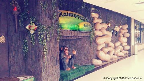 Rainforest Entrance
