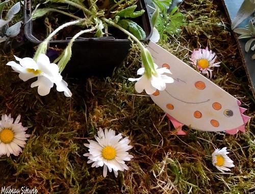 Préparation en cagettes florales de Pâques