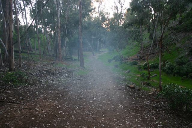 Hoyt Park