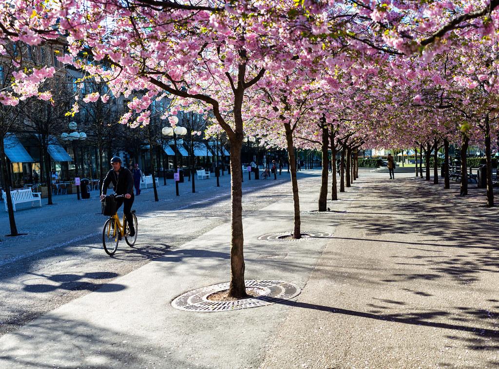 Stockholm, April 23, 2014