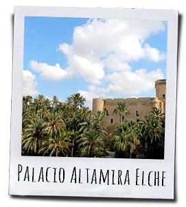 Het palmenbos rond het historische Elche is uniek voor Europa