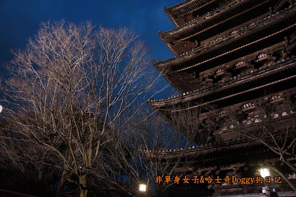 日本京都清水寺24