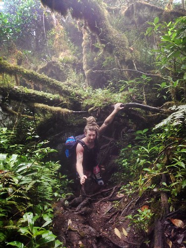 Hiking through cloud forest on the slopes of Volcan Maderas, Omotepe, Nicaragua