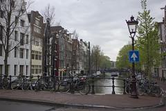 NEDERLAND - Amsterdam 091