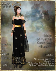 Maiden of Tuatha Gown Set-Black_Promo Art