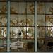 Small photo of Ai Weiwei exhibit, Alcatraz