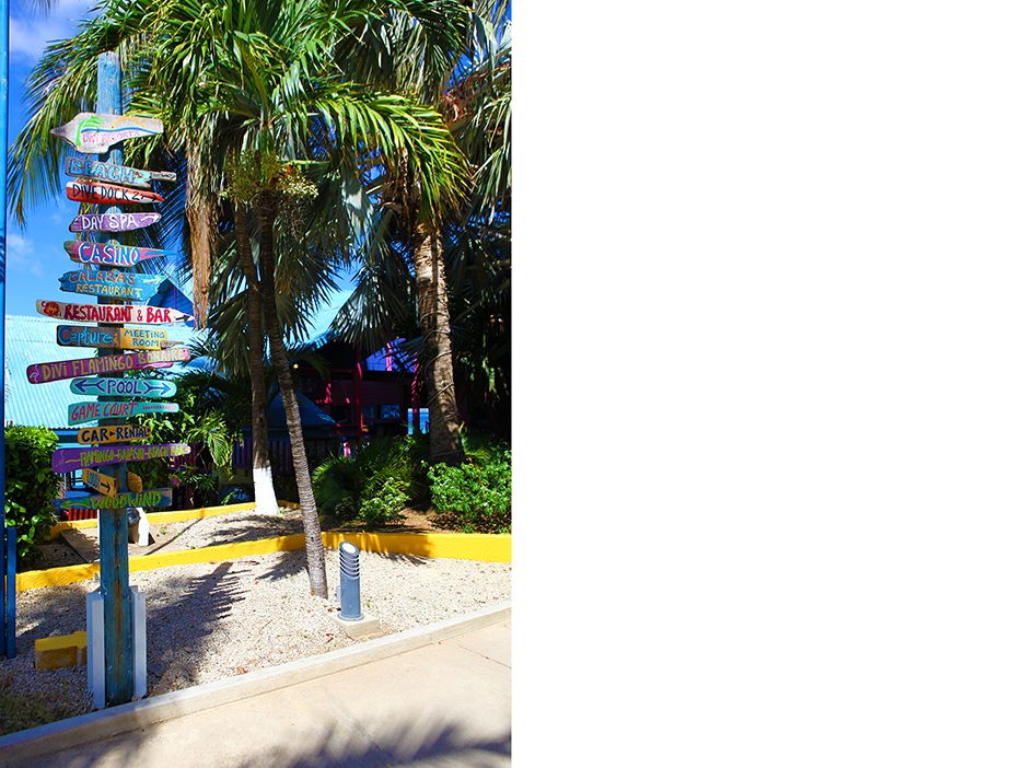 POSE-caribbean-dream-3.1