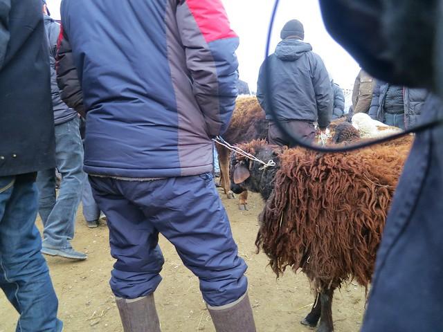 Karakol Animal Market