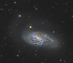 Leo Triplet - M66