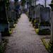 Jewish Cemetery Offenburg | Panasonic GX1 | Panasonic 20mm f1.7
