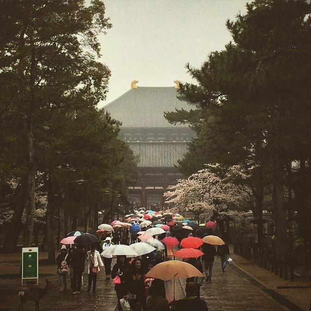 Kyoto-Nara