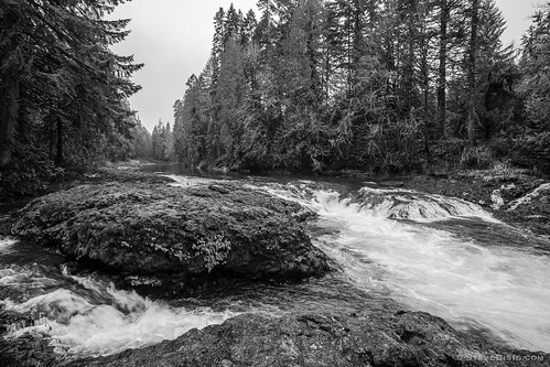 blackandwhite usa nature forest river landscape washington stream unitedstates northwest pacificnorthwest northamerica washingtonstate blackandwhitephotography naturephotography lewiscounty rainbowfalls landscapephotography chehalisriver rainbowfallsstatepark
