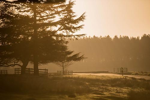 park sunrise nikon tc d750 70200 f28 bradgate 17x