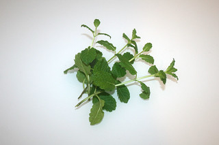 17 - Zutat Minze / Ingredient spearmint