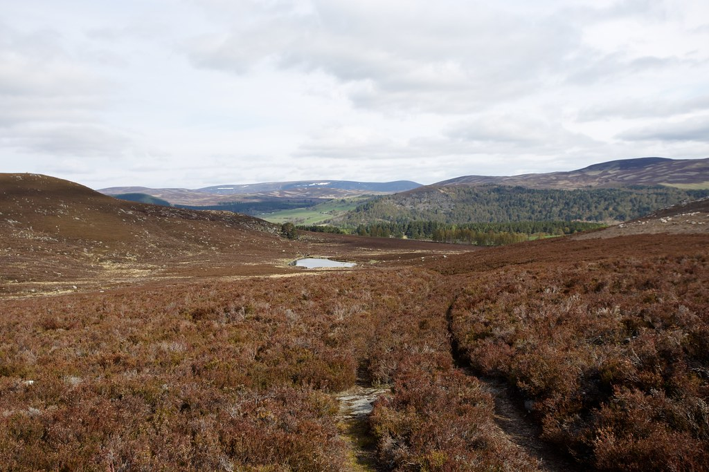 View back to Deeside