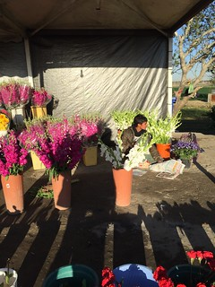 peasant selling flowers