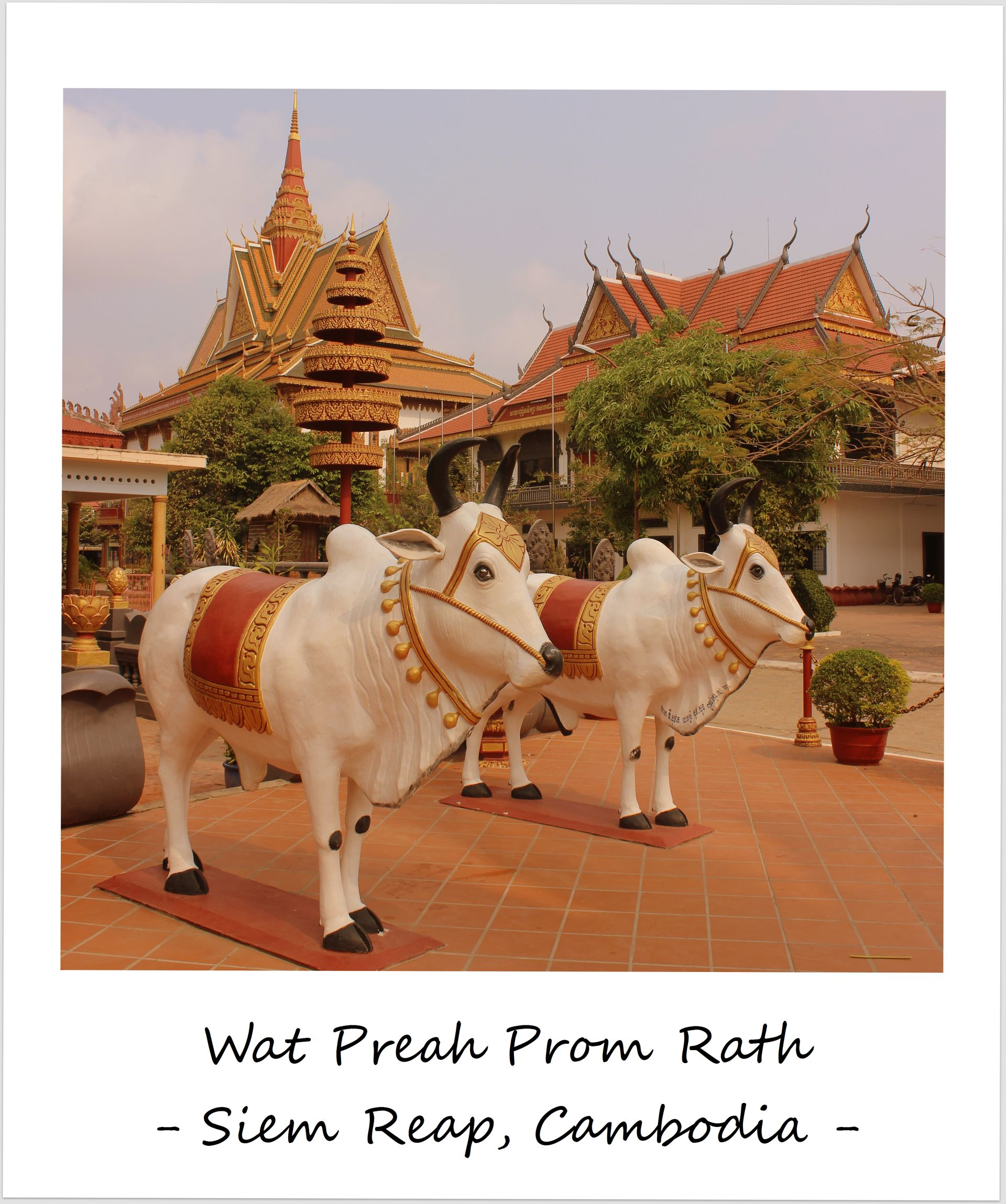polaroid of the week cambodia siem reap temple