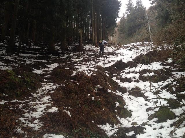 清滝山 登山道