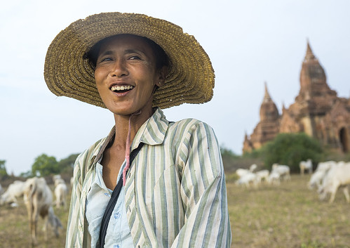 old travel people color colour history tourism archaeology nature smile face field grass hat smiling horizontal architecture rural work outdoors temple photography pagoda cow ancient women worship asia southeastasia day shepherd buddha burma stupa faith watch religion joy buddhism worker myanmar spirituality copyspace agriculture burmese adultsonly oneperson pagan lookingaway graze bagan sheperd archaelogy herding traveldestinations colorimage famousplace lookingatcamera nationallandmark traditionally placeofinterest waistup internationallandmark lowangleview 1people builtstructure colourpicture mandalayregion burma0115