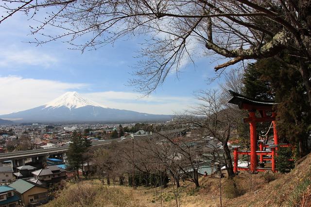 IMG_2674_fuji