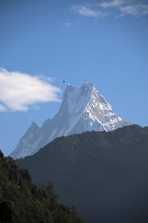 Eagle over the sacred mountain