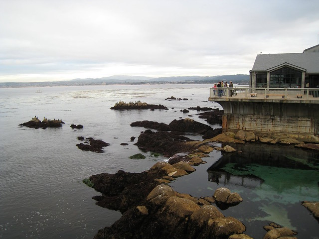 Monterey Bay Aquarium Monterey California By