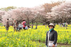 Photo:IMG_1077 国営昭和記念公園 花畑 By vicjuan