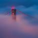 Morning Fog - San Francisco by davidyuweb