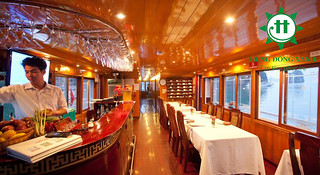 Alova Cruise