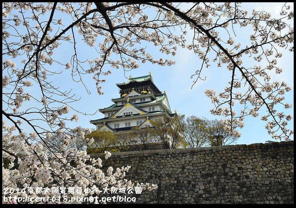 2014京都大阪賞櫻自由行-大阪城公園DSC_1860