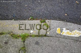 Elwoo_©_Melissa_Donaghue-6194