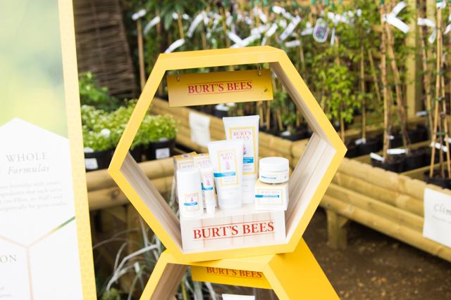 Burt's Bees skincare breakfast event
