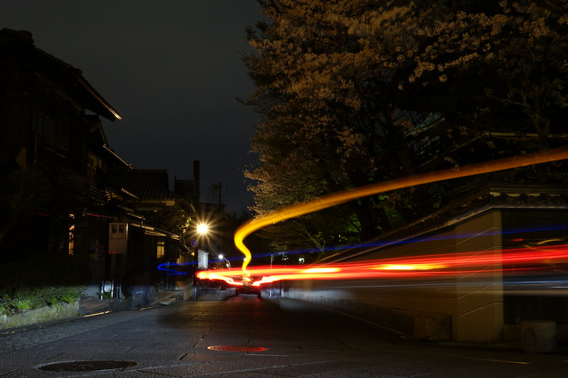 桜の京都 円山公園~清水寺ライトアップ