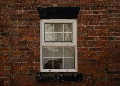 20141231-11_Braunston - Look-out cat - Window frame