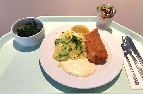 Baked coalfish wit remoulade & potato cucumber salad / Gebackener Seelachs mit Remoulade & Kartoffel-Gurkensalat