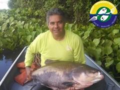 Aguinaldo da Silva Caceres-MT