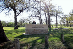 Trinity Forest Trail 140404(001)