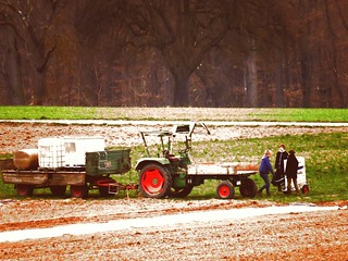 Lady Farmers with Fendt GT preparing Strawberry fields