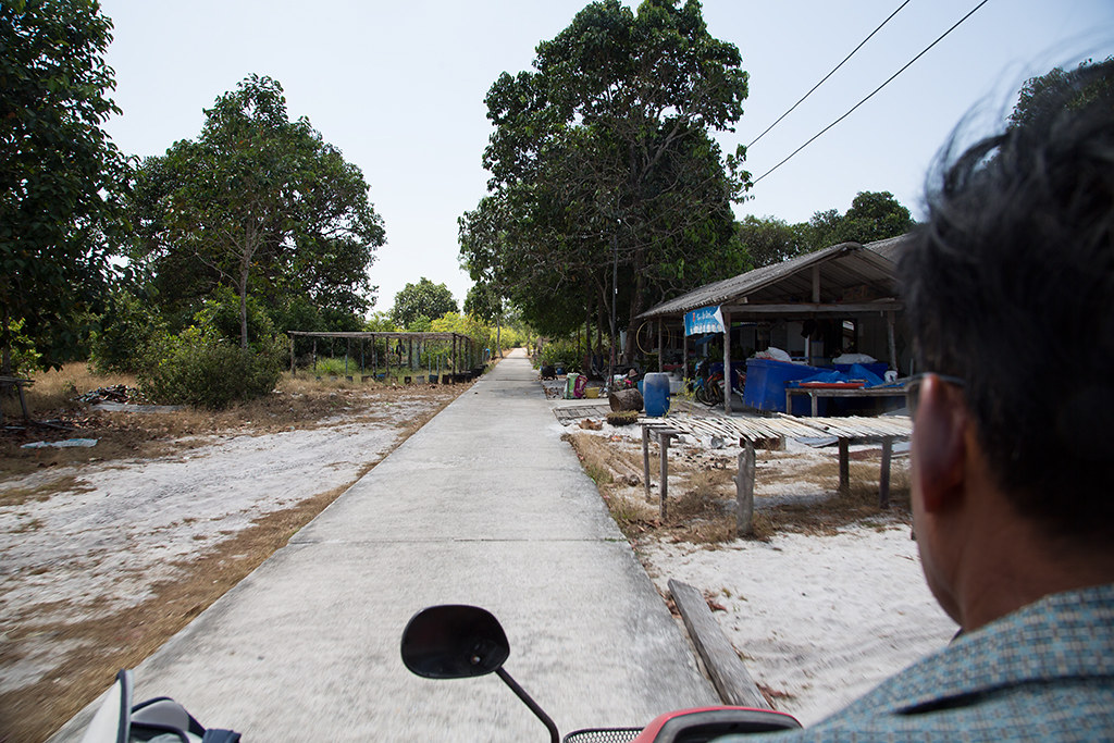 Motorbike transfer