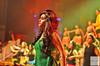 Shiamak Spring Funk Midlands 2015 Dance Show (10)