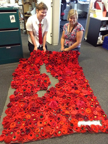 Poppy blanket at Upper Riccarton