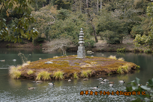 日本京都金閣寺20