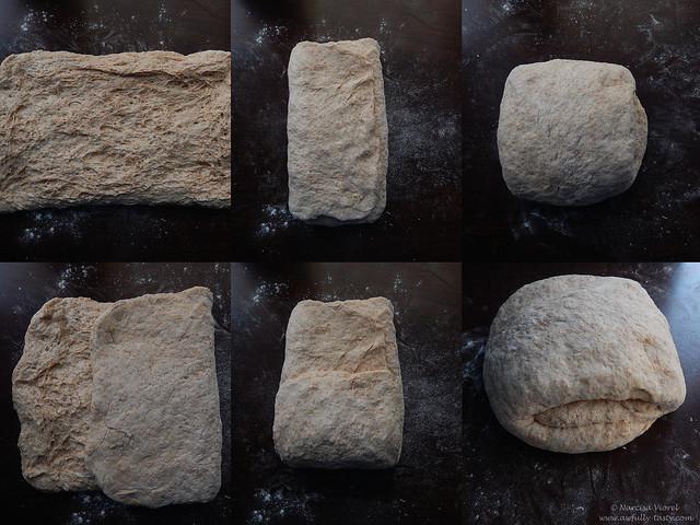 paine doris grant