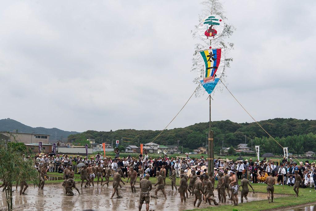 伊雑宮御田植祭-30